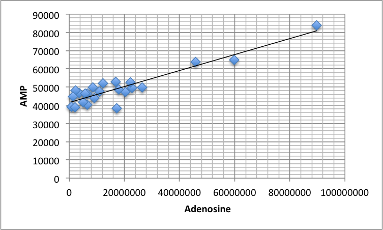 AMP adenosine women patients.png