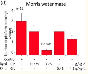 Morris Water Maze.png