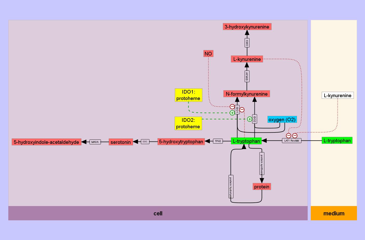 PhairIDOmetabolictrapmodel.png