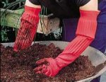 Mucking gloves..jpg