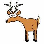 deer-2..jpg