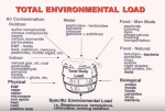 Total Environmental Load Dr Rea Dr Nagy.png